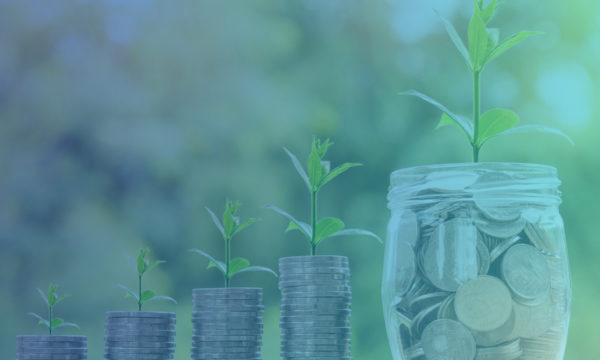 Startup and investment funds